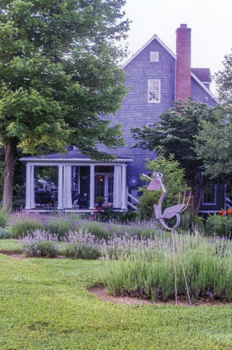 Purple House In The Garden | Gardening: Flower and Vegetables