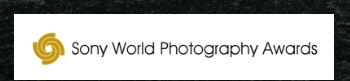 Professional photo competition 2019