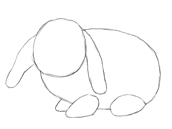 How To Draw A Bunny Step By Step - Draw Central