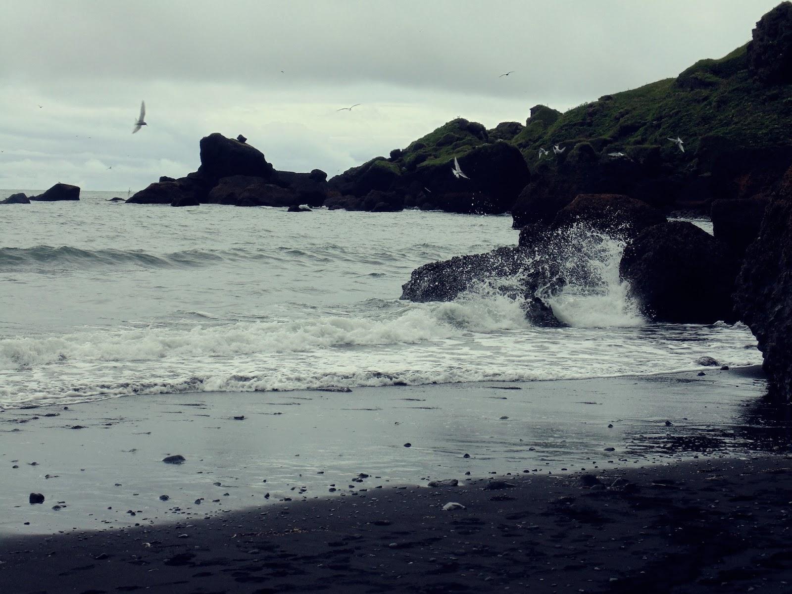 plaża w Viku, Vikurfjara, Vik, miasteczko Vik, islandzkie miasto, Islandia, południowa Islandia, brzydka Islandia, islandzka plaża