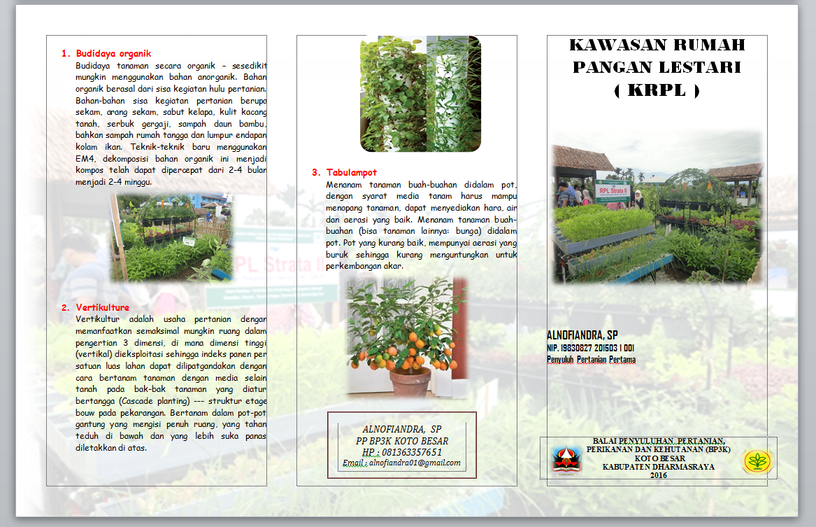 Sharing Tips And Information Kumpulan Leaflet Materi Penyuluhan