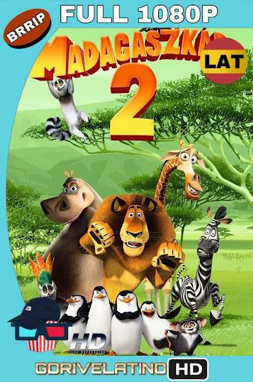 Madagascar 2 (2008) BRRip 1080p Latino-Ingles MKV