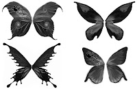 butterfly brushes photoshop download