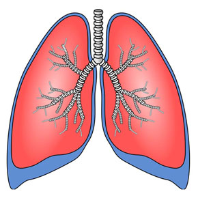 Болезни лёгких