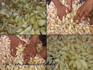How To Make Garlic Powder At Home in hindi by aju
