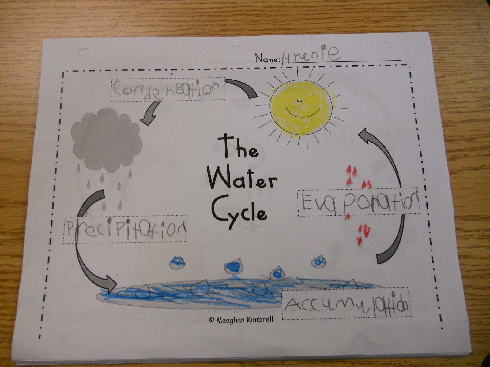 Mrs  Kimbrell U0026 39 S Kindergarten  The Water Cycle