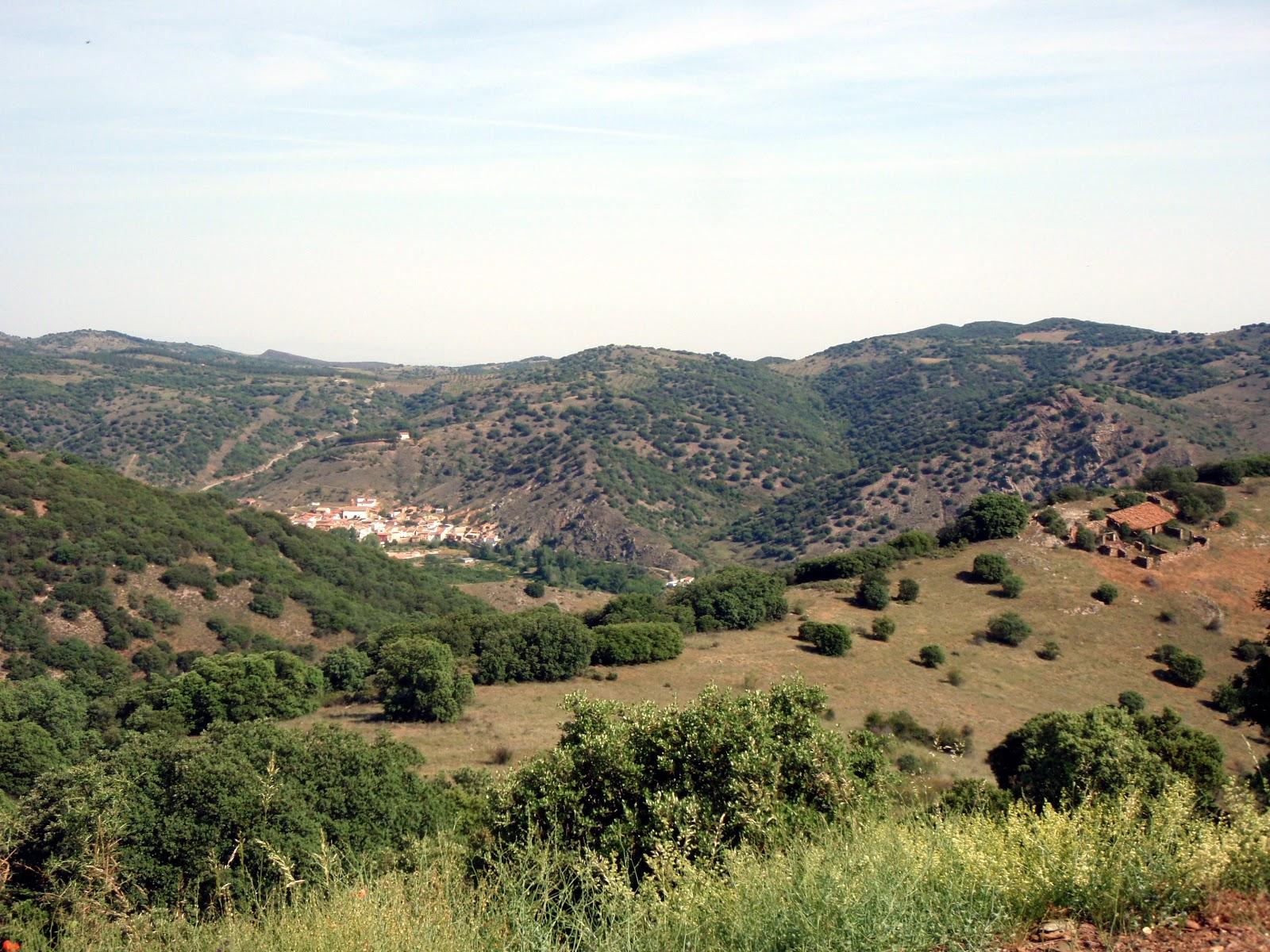 El Bosque Esclerofilo Mediterraneo Sierra Del Peco Zaragoza