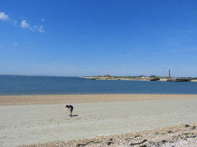 eastney nudist beach at low tide