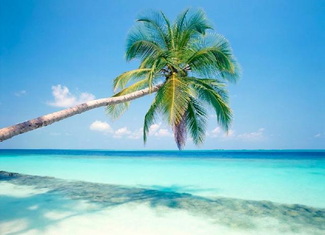 Descubra a Ilha Saona em Punta Cana
