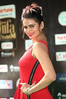 Meenakshi Dixit in Red One Shoulder Red Zipped up gown at IIFA Utsavam Award 38.JPG