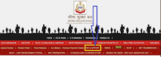 BSF PAY SLIP first website