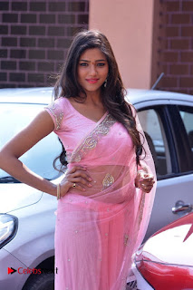 Telugu Actress Shalu Chourasiya Stills in Cute Pink Saree at Pochampally IKAT Art Mela  0007.jpg
