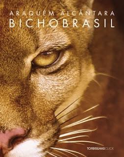 CRUSH FOTÓGRAFO/A - Livro Bicho Brasil