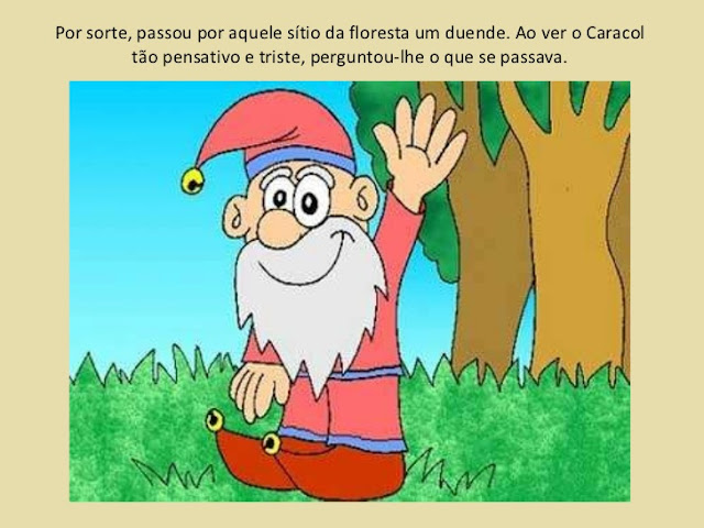 O carnaval na floresta