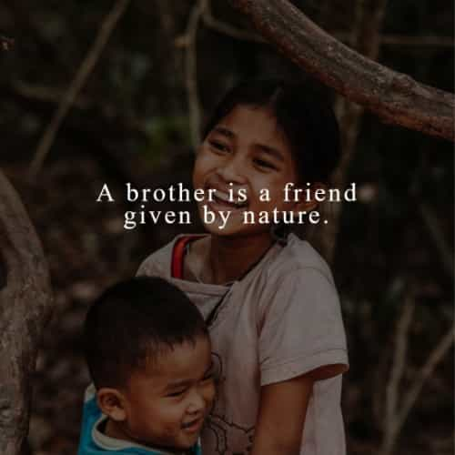 Brother between sister and about love quotes 39 Quotes