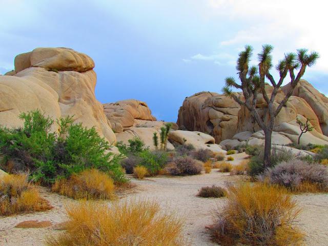 A Jewel Between Los Angeles San Diego Phoenix And Las Vegas