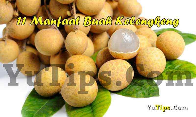 manfaat buah lengkeng untuk kesehatan