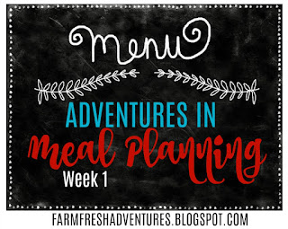 Adventures in Meal Planning