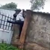 Nigerian Thief Electrocuted To Death While Trying To Climb An Electric Barbed Wire
