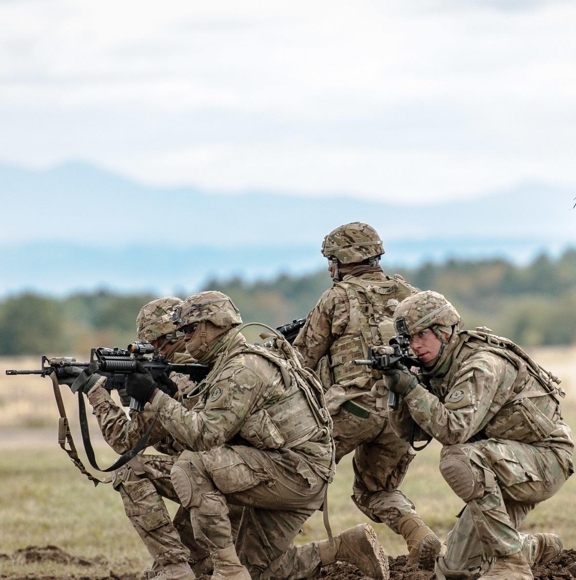 Lujoso Experiencia Militar Muestra De Reanudación Friso - Ejemplo De ...