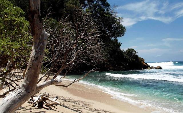 Wisata Pantai Ngalur Tulungagung – Wisata Pantai Tulungagung