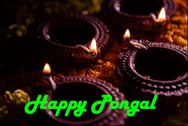 Pongal Kolams Images