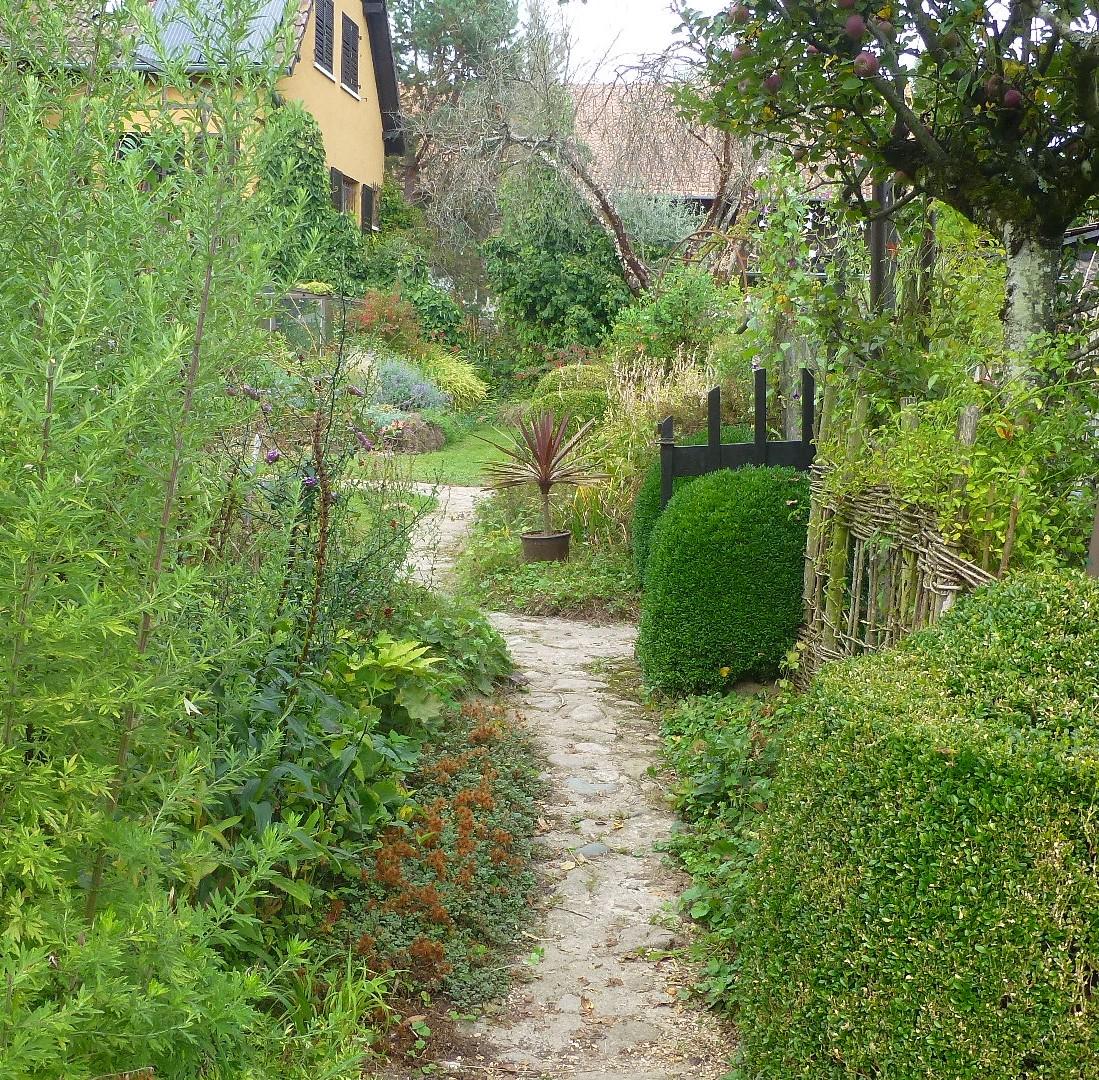 Le jardin de brigitte alsace septembre 2015 for Jardin septembre 2015