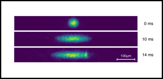 Experimental TOF images of the effectively 1D expanding SOC BEC for expansion times of 0, 10, and 14 ms. Credit: WSU