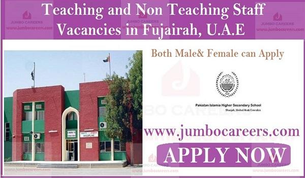Non Teaching Staff School Jobs in Ajman, Teaching Education Jobs in Fujairah,