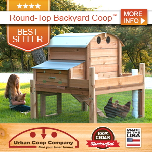 photo Chicken_Coops_Best-Seller_300x300_zpsfne3ybr1.jpg
