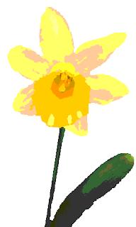 fleur de jonquille / narcisse - grille de point de croix a telecharger gratuitement