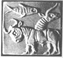 Image result for ayo fish indus script