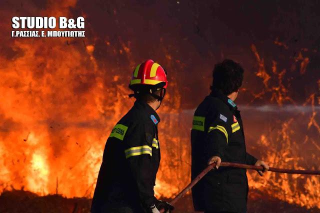 Πάνω από 50 πυρκαγιές σε ένα 24ωρο - Υψηλός ο κινδυνος πυρκαγιάς σήμερα για την Αργολίδα