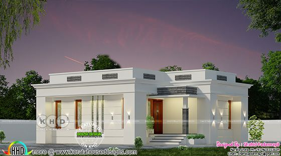 Flat roof 2 bedroom single floor home plan