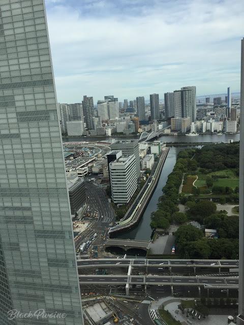 vue-tokyo-hotel-park-shiodome
