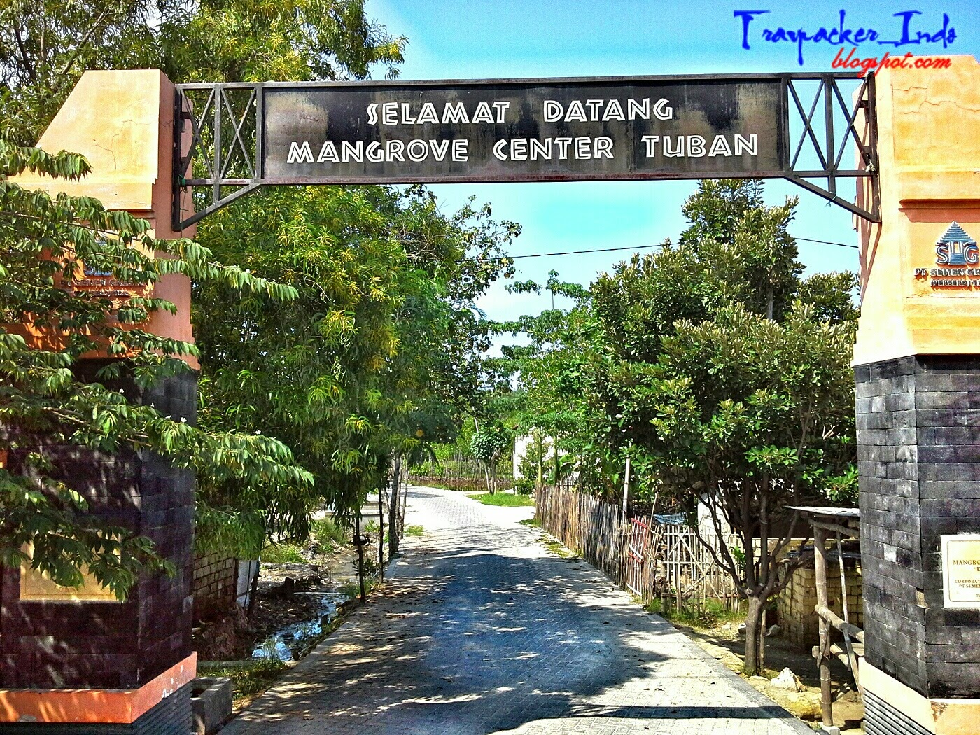 mangrove center tuban