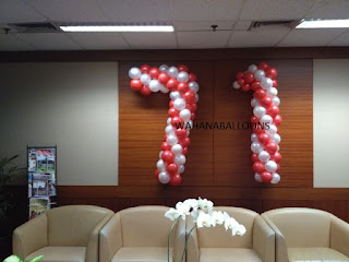 www.wahanaballoon.com