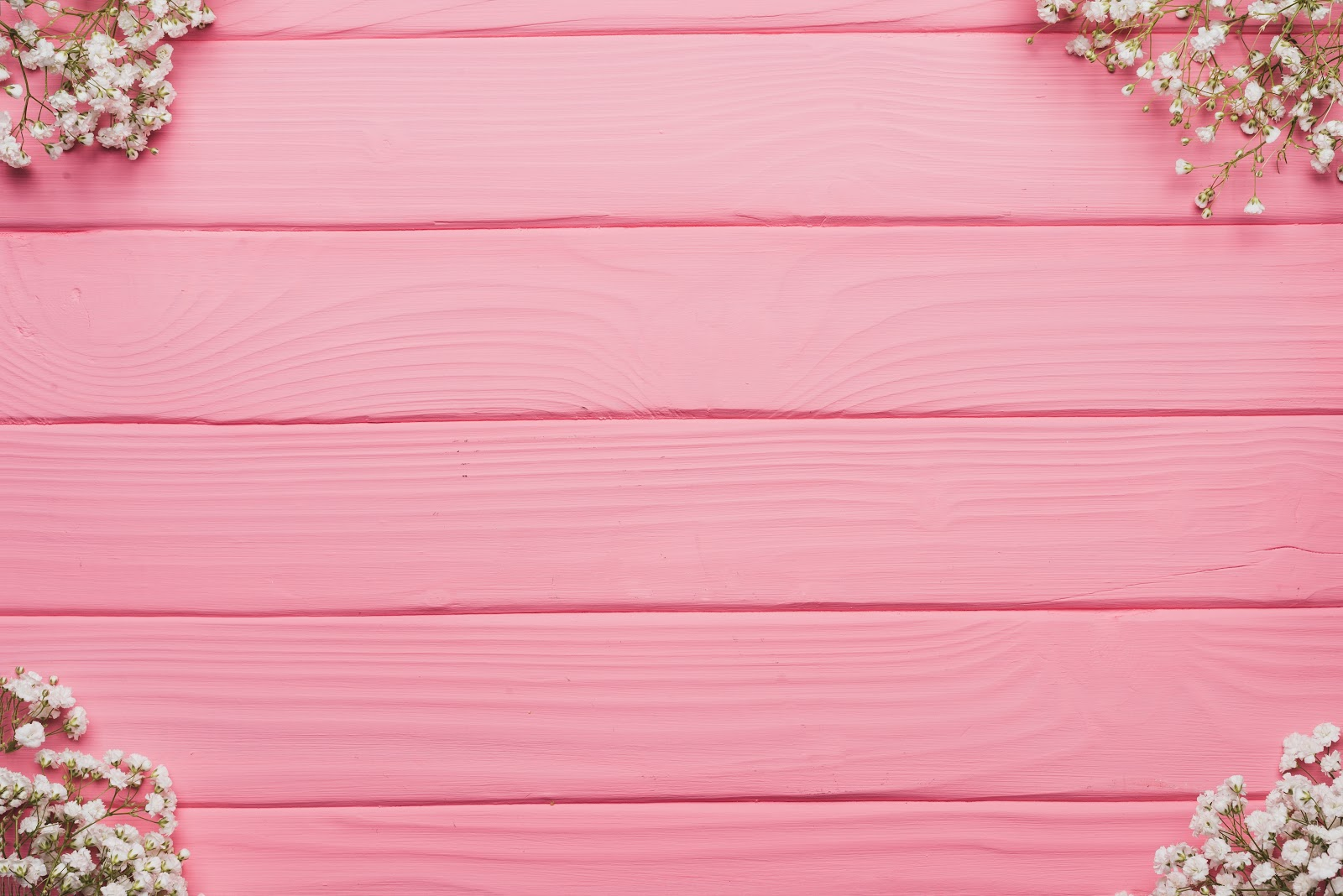 White Petaled Flowers on Pink Wooden Table