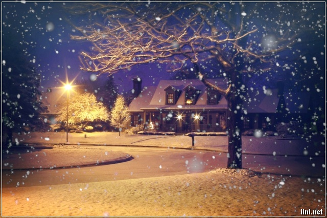 Đêm mùa Đông tuyết rơi