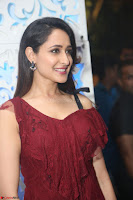 Pragya Jaiswal in Stunnign Deep neck Designer Maroon Dress at Nakshatram music launch ~ CelebesNext Celebrities Galleries 086.JPG