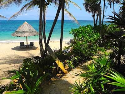 bliss beach, the black iguana, beach bar, nature trails, zen path, chillout stations, views, nude beach, naturism, naturist week, plunge pool,