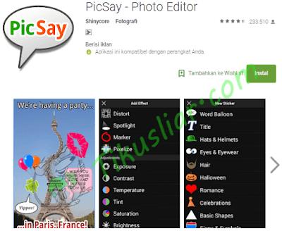 Download PicSay Pro v1.8.0.5 Update Terbaru Terbaru dan Apk