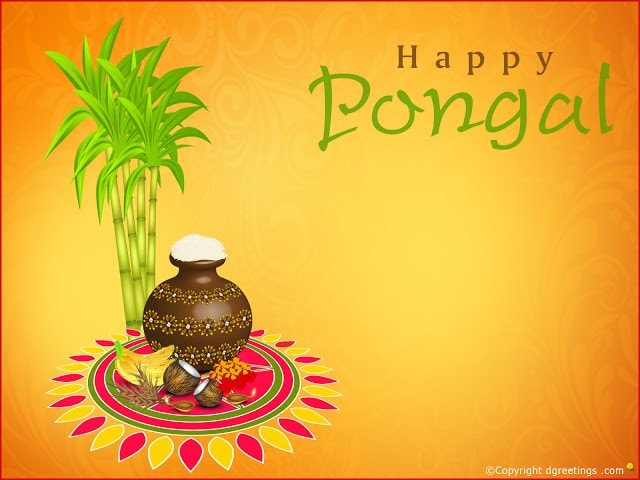 Happy pongal 2017 images wallpapers pictures