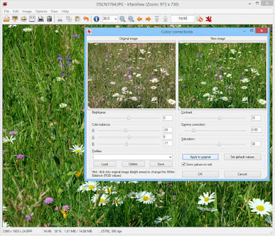 IrfanView Free Download For Windows