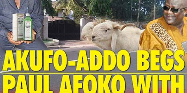Akufo-Addo Begs Paul Afoko With Sheep & Schnapps