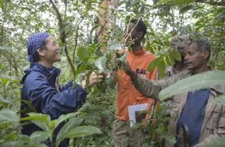 بالفرنسية préservation l'environnement JAPAN-2.PNG