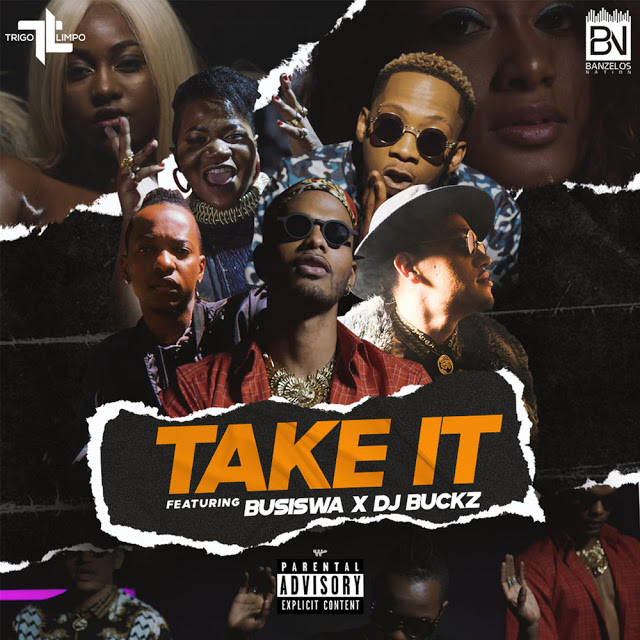 https://fanburst.com/valder-bloger/trigo-limpo-take-it-feat-dj-buckz-busiswa/download
