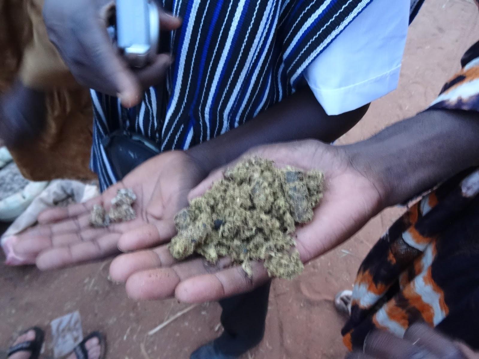 Cottonseed Oil Cake Price Akola
