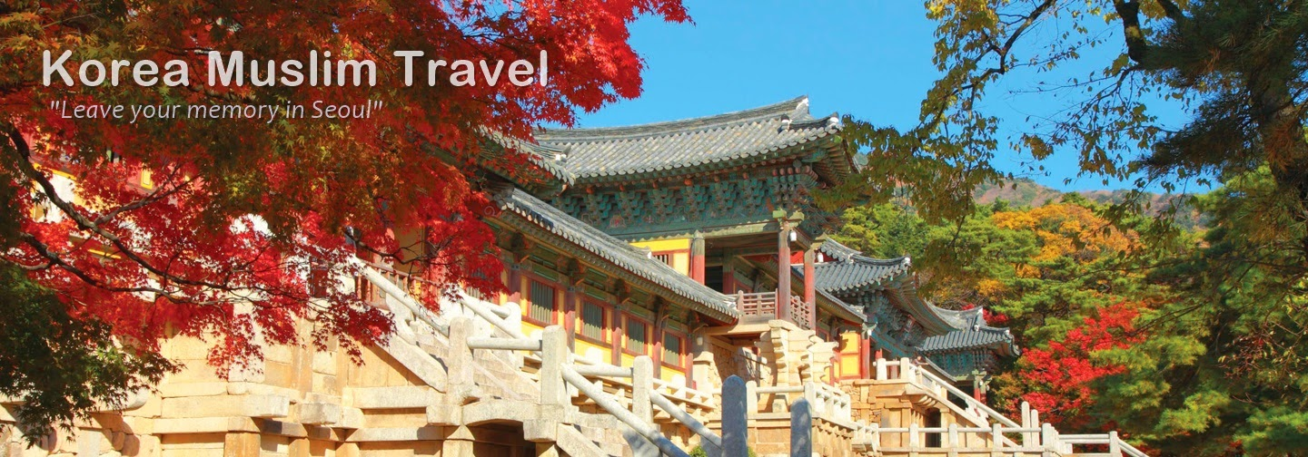 Yl Travel And Tours