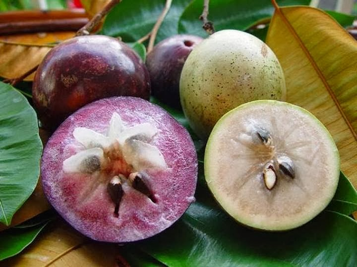 Health Benefits of Star Apple fruit